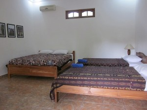 Room 2 – Kalimantan